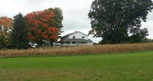 Fall scenery near the Eicher farm/home.