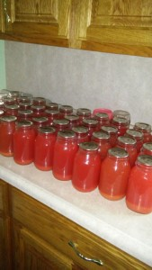 The Eicher family canned 45 quarts of rhubarb juice one day last week.