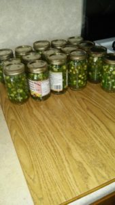 Hot peppers from the Eicher garden, canned and ready to spice up winter meals.